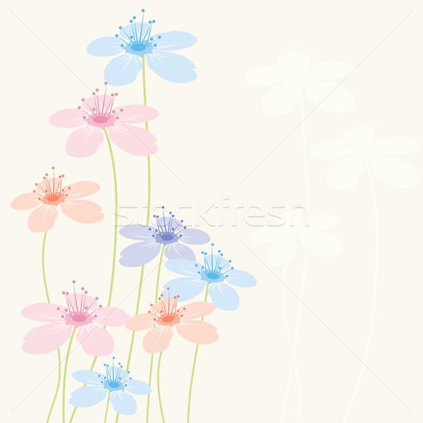 Vetor abstrato floral flor natureza fundo Foto stock © Dahlia