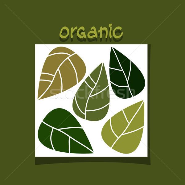 Abstrato simples projeto folhas verdes orgânico vetor Foto stock © Dahlia