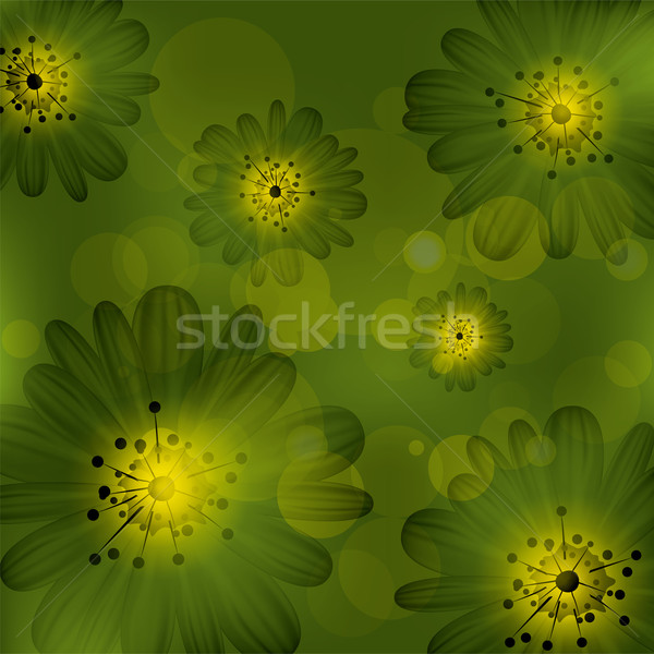 Vetor abstrato floral luz fundo beleza Foto stock © Dahlia
