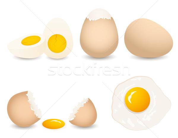 Vetor ovo coleção isolado branco comida Foto stock © Dahlia