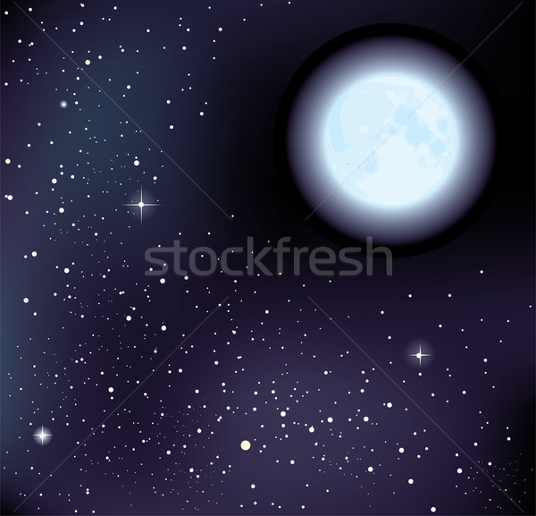 vector starry sky and moon Stock photo © Dahlia
