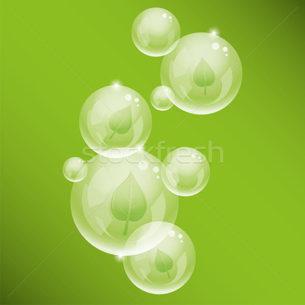 vector  bubbles and green leaves Stock photo © Dahlia