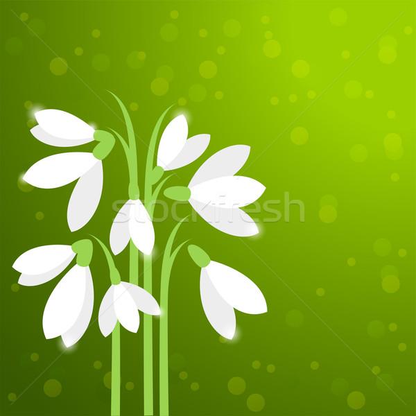 вектора первый весенние цветы карт весны аннотация Сток-фото © Dahlia