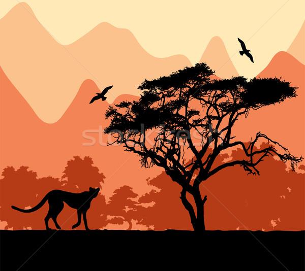 vector wild african animals Stock photo © Dahlia
