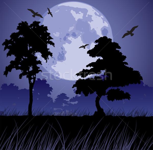 Vetor lua silhuetas árvores grande azul Foto stock © Dahlia
