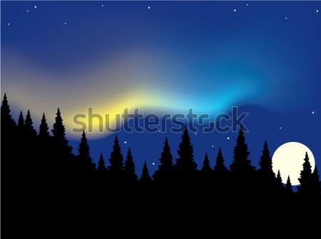 オーロラ 森林 ベクトル 風景 山 1泊 ストックフォト © Dahlia