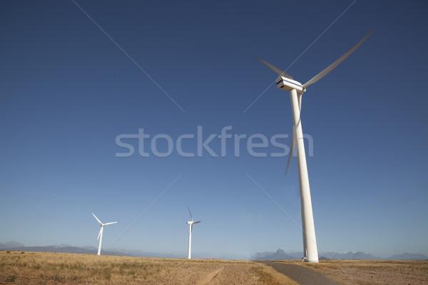 Renewable Energy Stock photo © danienel