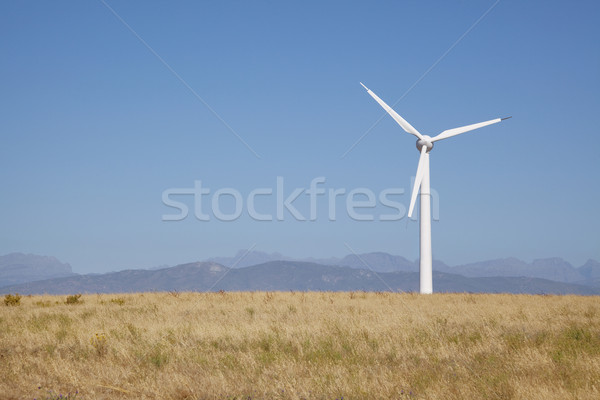 Renewable Energy Stock photo © danienel