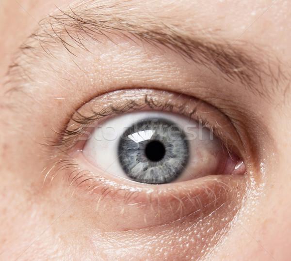 Rechercher oeil bleu blanche Photo stock © danienel