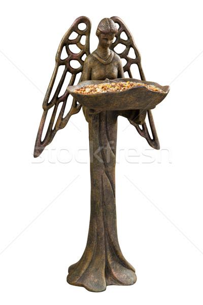 Kuş melek yalıtılmış kadın Stok fotoğraf © danny_smythe
