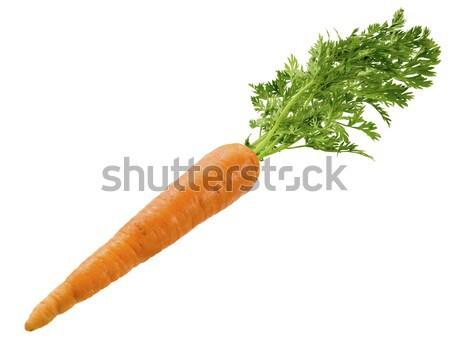 Carrot Stock photo © danny_smythe