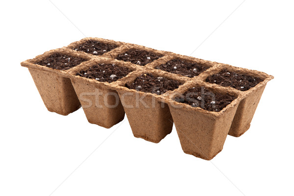 Fiber Seed Starting Cell Stock photo © danny_smythe