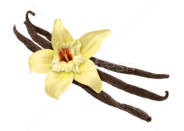 Vanilla Bean and Flower (clipping path) Stock photo © danny_smythe