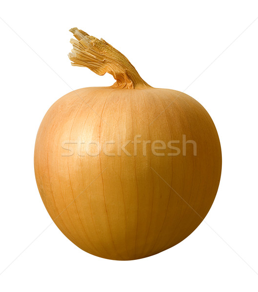 Yellow Onion isolated Stock photo © danny_smythe