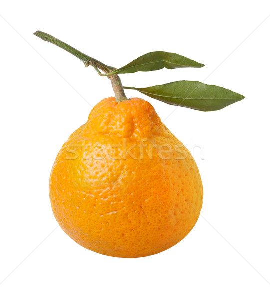 Satsuma Orange Isolated with clipping path Stock photo © danny_smythe