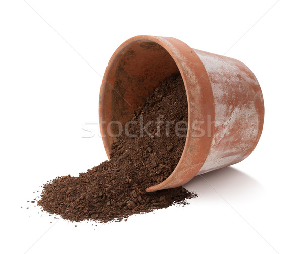 Flowerpot Spill Isolated with clipping path Stock photo © danny_smythe