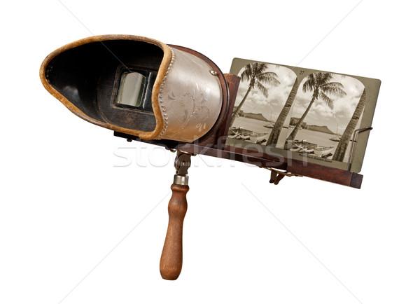 Antika yalıtılmış beyaz palmiye seyahat Stok fotoğraf © danny_smythe