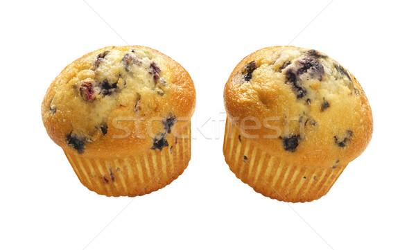 Blueberry Muffins Isolated Stock photo © danny_smythe