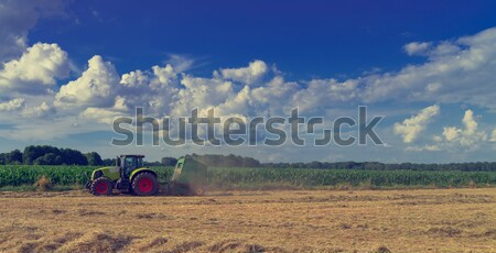Tractors and harvesting - vintage Stock photo © Dar1930