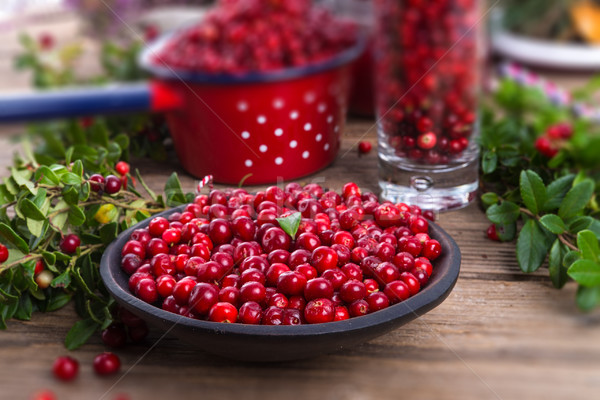 Lingonberries Stock photo © Dar1930
