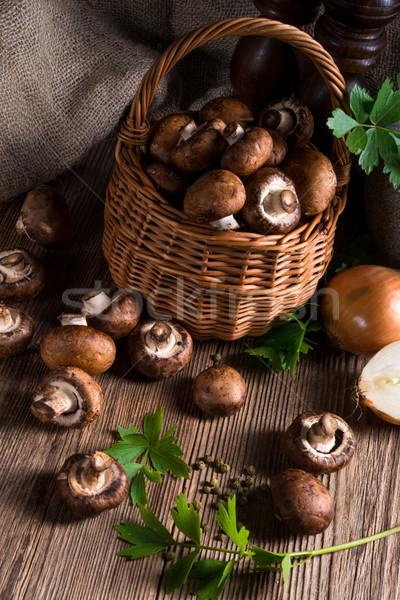Scaly Wood Mushroom Stock photo © Dar1930