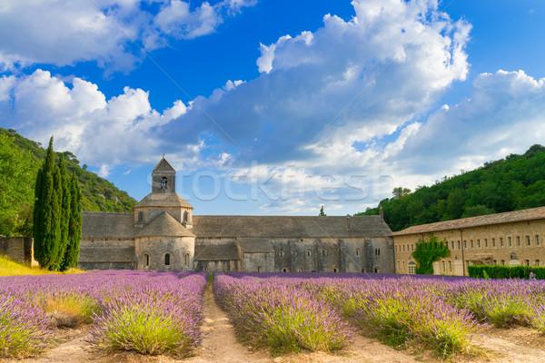 Monasteries of the Cistercian Stock photo © Dar1930