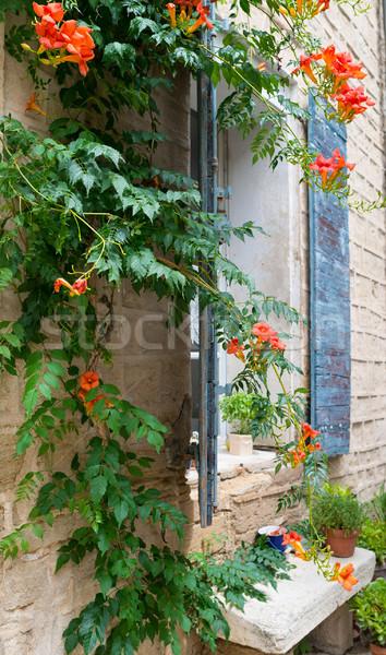 Window in the Provence. Stock photo © Dar1930