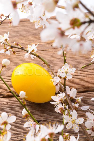 Easter egg çiçekler dizayn yumurta beyaz tatil Stok fotoğraf © Dar1930
