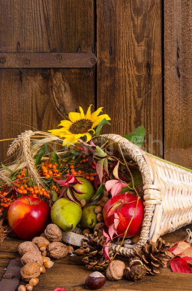 Duda zöldségek fa levél narancs piros Stock fotó © Dar1930