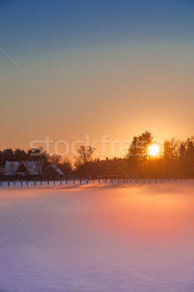 winter landscape with color look Stock photo © Dar1930