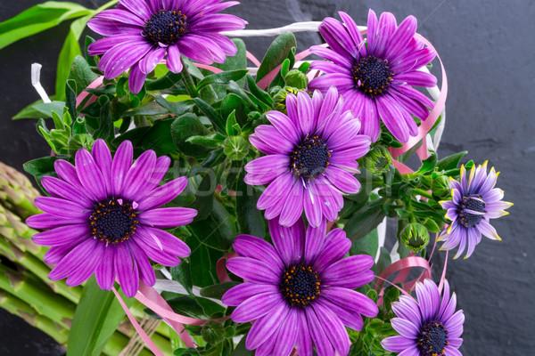 violet daisies Stock photo © Dar1930