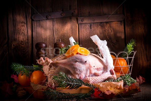 Gans Licht Küche Vogel Huhn Stock foto © Dar1930