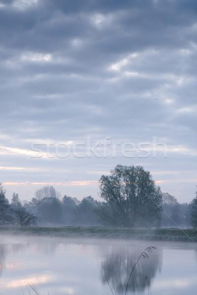 реке лес пейзаж лет путешествия Сток-фото © Dar1930