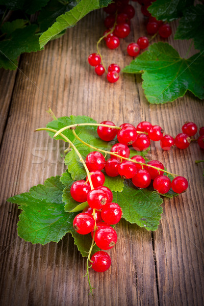 red currants Stock photo © Dar1930