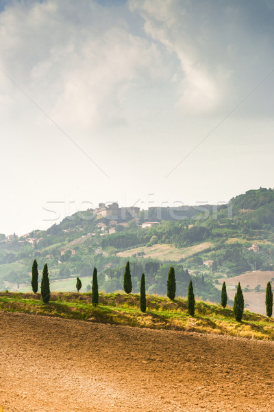Alanları Toskana gökyüzü yol şarap doğa Stok fotoğraf © Dar1930