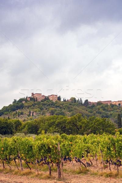 Alanları Toskana yol şarap gün batımı manzara Stok fotoğraf © Dar1930