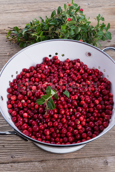 cranberries in a colander Stock photo © Dar1930