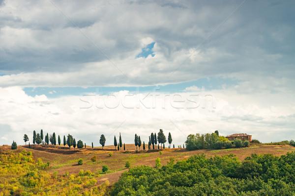 полях Тоскана дороги вино закат пейзаж Сток-фото © Dar1930