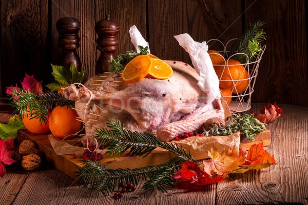 Ruw gans licht keuken vogel kip Stockfoto © Dar1930