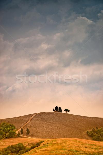 Sağanak Toskana gökyüzü bulutlar güneş yaz Stok fotoğraf © Dar1930