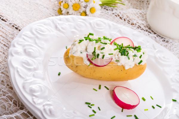 Novo batatas primavera fundo cozinha queijo Foto stock © Dar1930