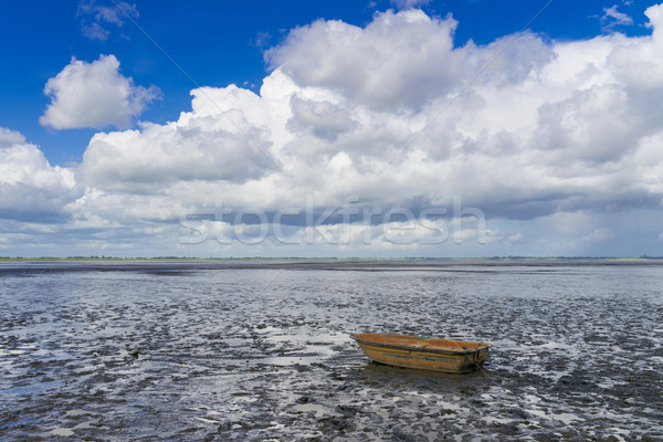 Mudflat Stock photo © Dar1930