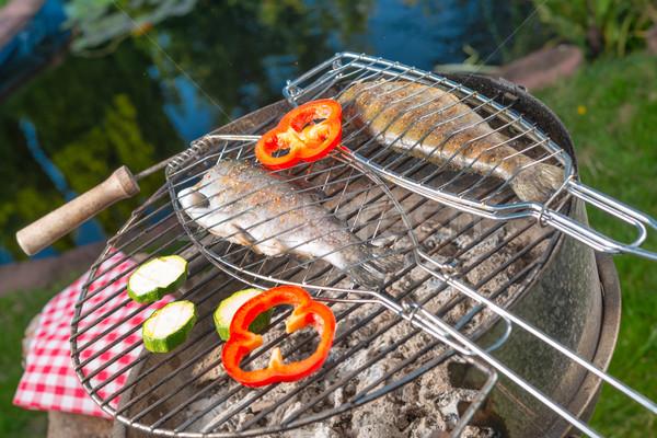 Grillowany pstrąg żywności ognia drewna charakter Zdjęcia stock © Dar1930