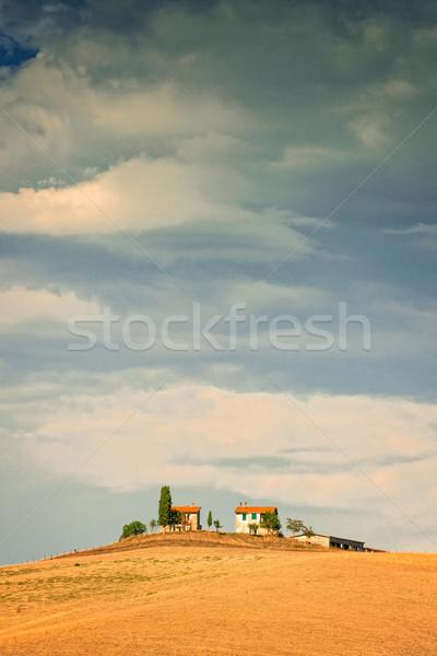 Mezők Toszkána égbolt út bor természet Stock fotó © Dar1930