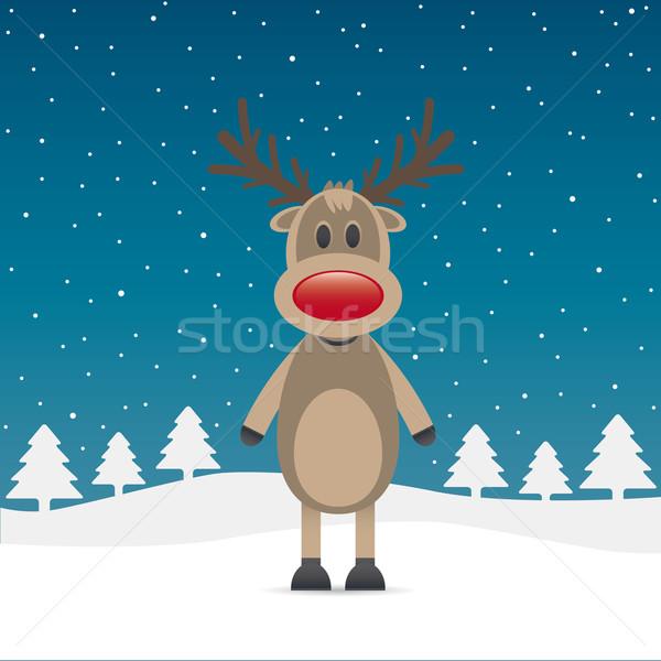reindeer red nose snow falls night Stock photo © dariusl