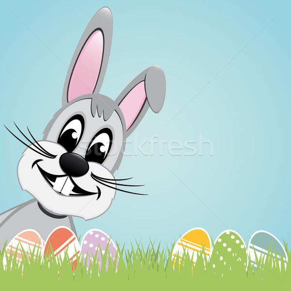 gray easter bunny colorful eggs Stock photo © dariusl