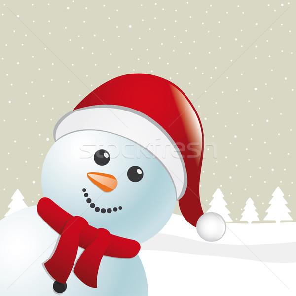 Kardan adam eşarp noel baba şapka mutlu arka plan Stok fotoğraf © dariusl