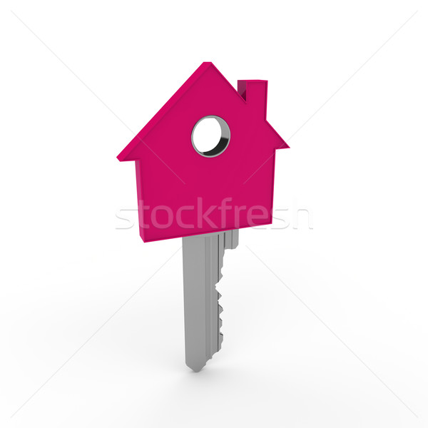 3d home key pink Stock photo © dariusl