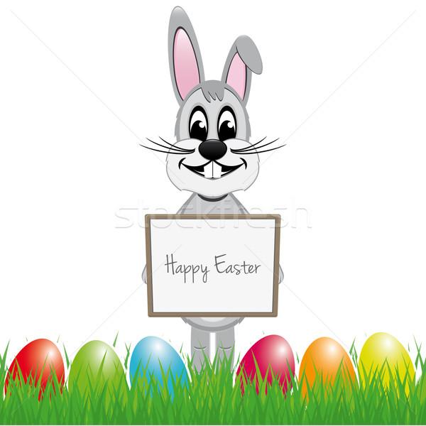 Easter bunny renkli yumurta Paskalya ahşap Stok fotoğraf © dariusl