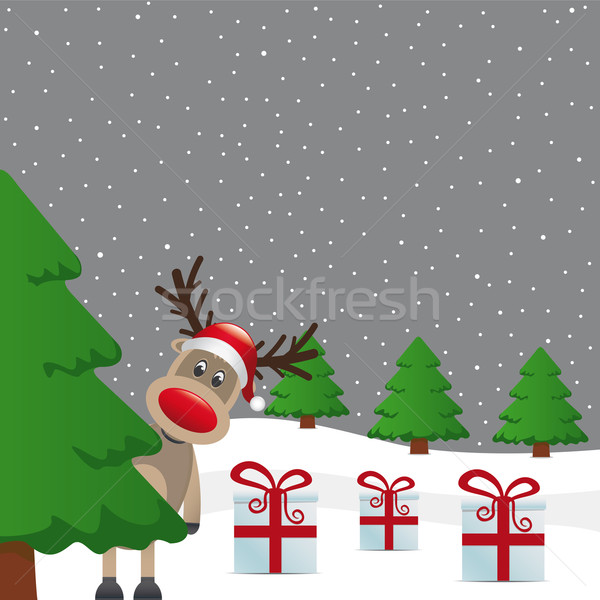 Stok fotoğraf: Ren · geyiği · kış · manzara · ağaç · hediye · hediye · kutuları